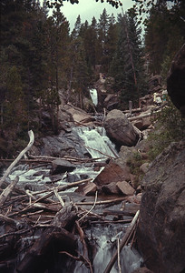 Chasm Falls, Colorado Rocky Mountain National Park.  August 17, 1963