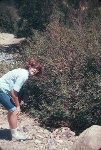 Chris At Abandoned Mine.  Near Black Hawk, CO.  August 16, 1963