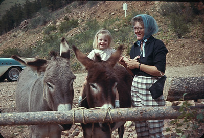 Theresa On Powder Puff & Midnight At Vic's Gold Panning.  South of Black Hawk, CO.  August 15, 1963