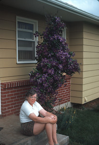 Dorothy And Her Clematis, Platte City, MO,  June 1967