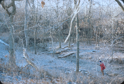Dorothy Sell Working In The Timber Clearing And Burning Dead Trees, Kansas, November 1974