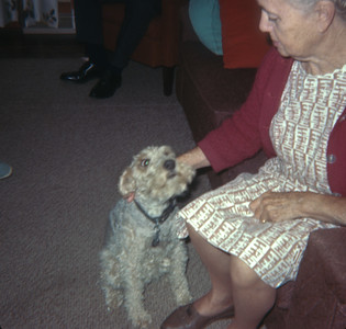 Venus Sell And Dog, MI, 1972