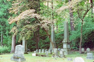 Mt. Hope Cemetery - CineStill 800