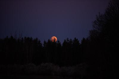 Super úplněk / Super Full Moon