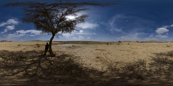 Sinai Desert Lake