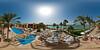 pool palms