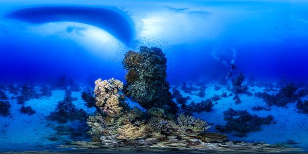 Dangerous reef01