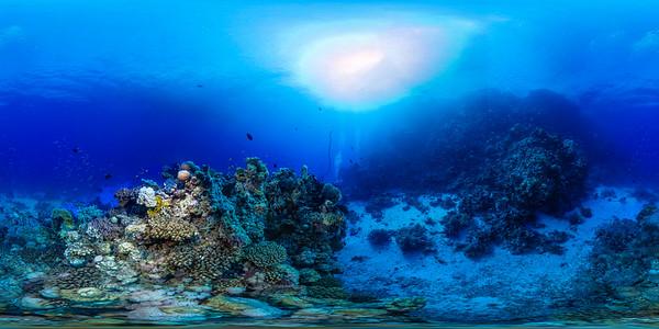 Dangerous reef03