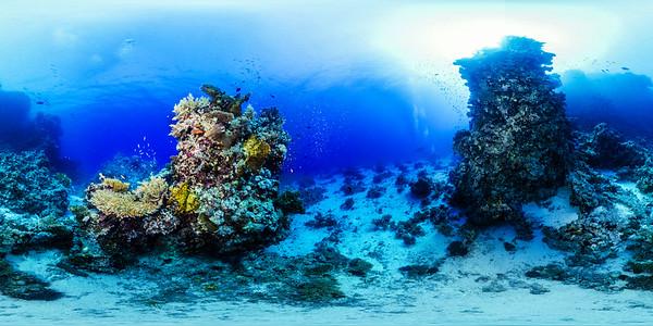 Dangerous reef04