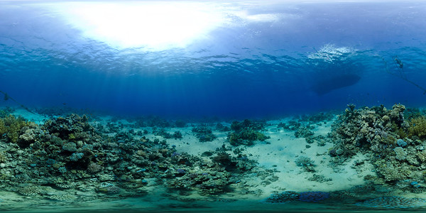 Gordon Reef