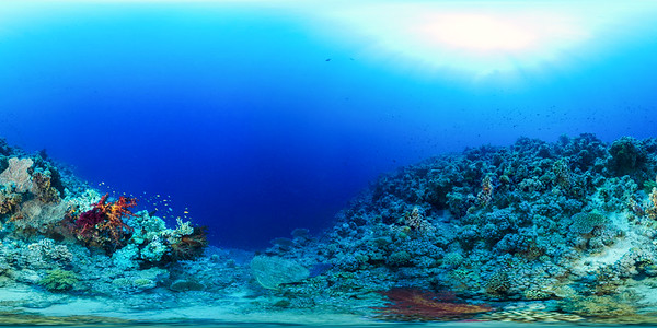 Gordon reef 03