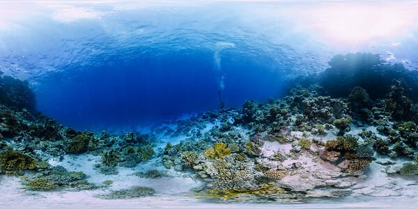 Gordon reef 05