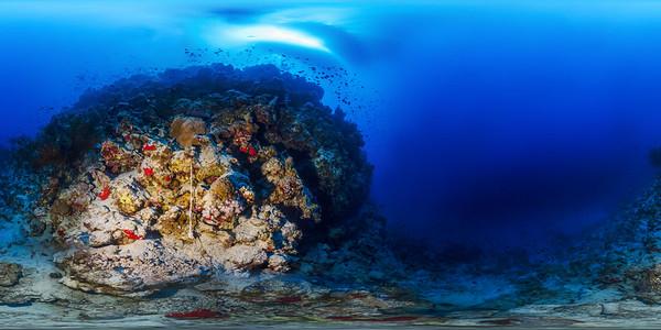Jackson reef 05