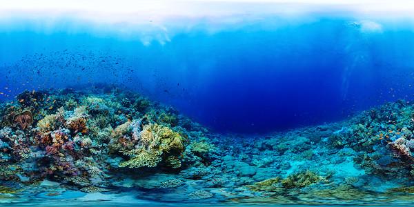 Jackson reef 03