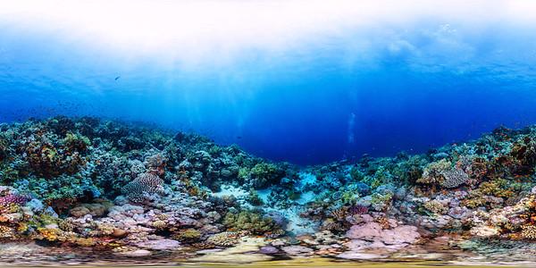 Jackson reef 02