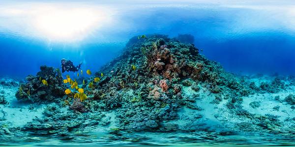 Poseidon Reef 5