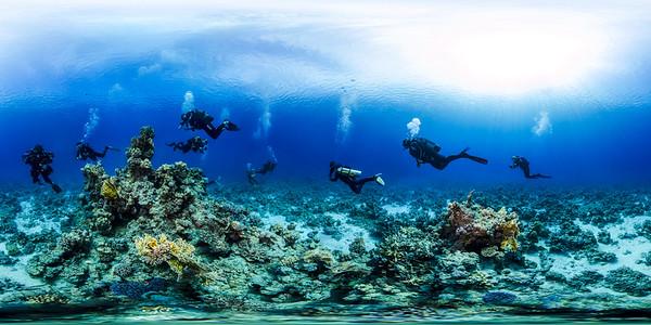 Poseidon Reef