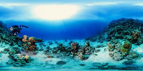 Poseidon Reef 4