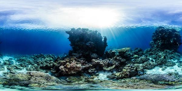Poseidon Reef 9