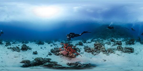 Poseidon Reef 7