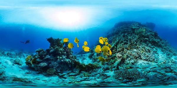 Poseidon Reef 3