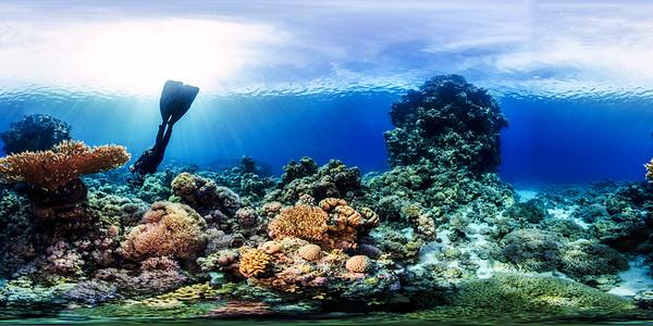 Poseidon Reef 10