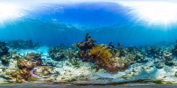 Punta Cana underwater 002_sphere
