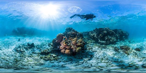 Punta Cana underwater aquarium 013_sphere