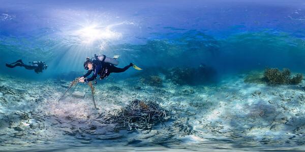 Punta Cana underwater coral installation 015_sphere