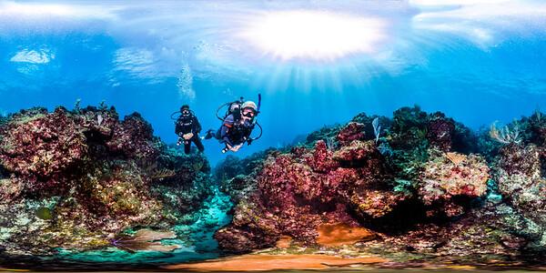 Punta Cana underwater 004