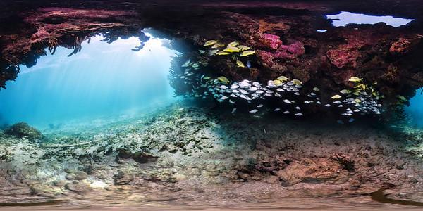 Punta Cana underwater aquarium 010_sphere