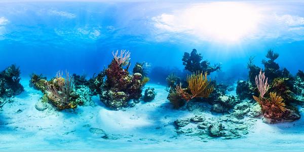 Punta Cana underwater 006_sphere