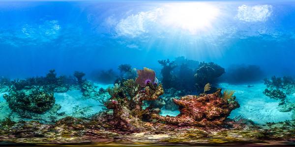 Punta Cana underwater 007_sphere