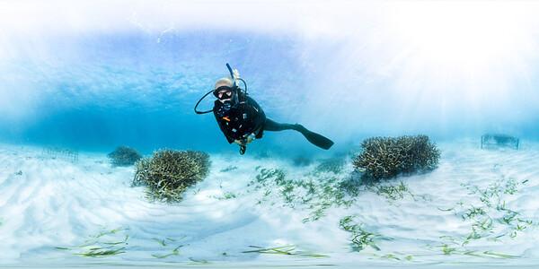 Punta Cana underwater coral installation 016_sphere