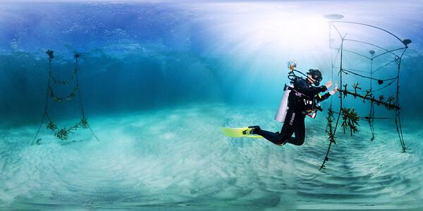Punta Cana underwater coral installation 012_sphere