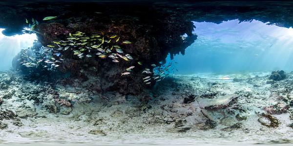 Punta Cana underwater aquarium 014_sphere