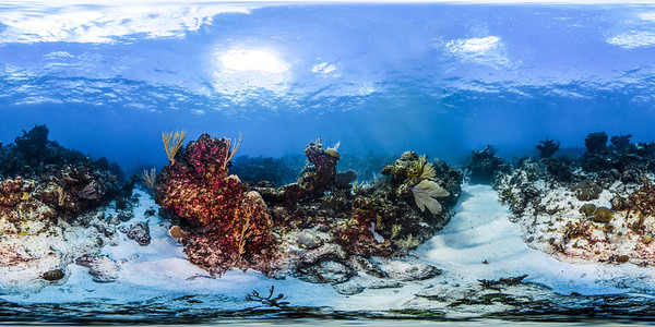 Punta Cana underwater 009_sphere