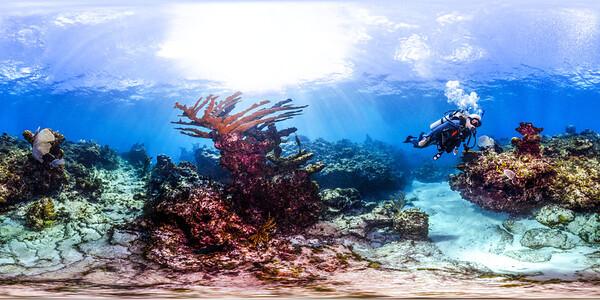 Punta Cana underwater 008_sphere