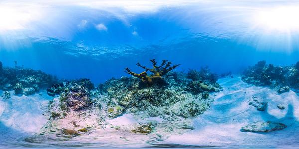 Punta Cana underwater 001_sphere