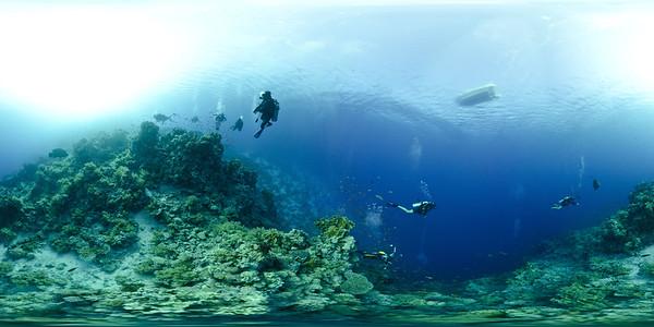Ras Mohamed -Yolanda Reef