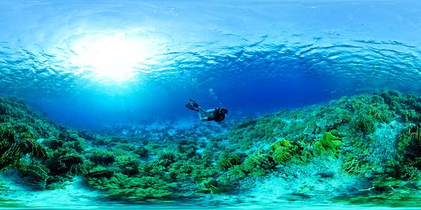 Plateaux in Yolanda Reef