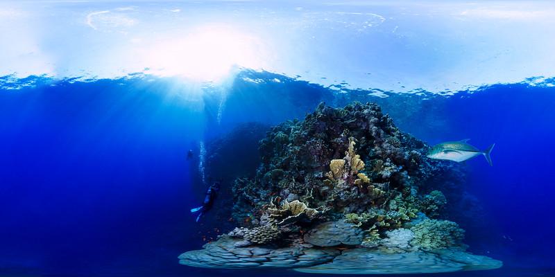Roky island07.jpg