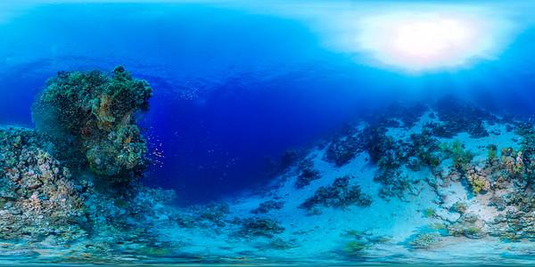 Sheraton reef