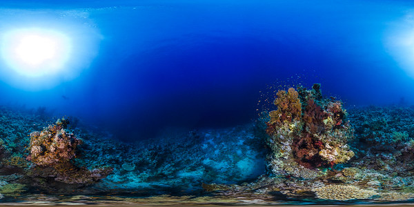 sheraton reef 03
