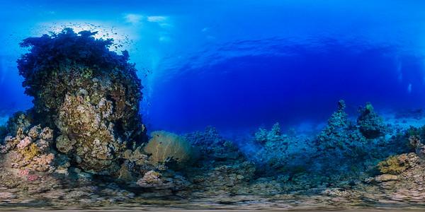 sheraton reef 04