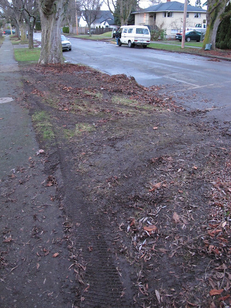 """You call this """"picking up leaves""""?!<br /> <br /> Victoria, BC."""