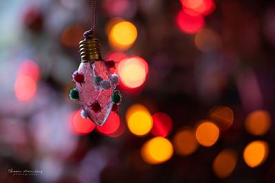 December24-359_365_morrissey20-2