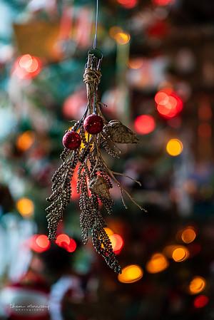 December24-359_365_morrissey20-8