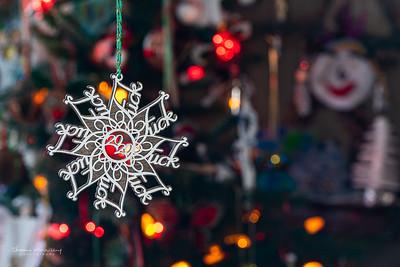 December24-359_365_morrissey20-11
