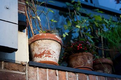 327 | Flower pots